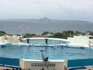 OKinawa Aquarium Show