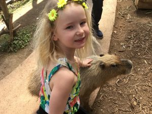 Petting Zoo at Southeast Botanical Gardens