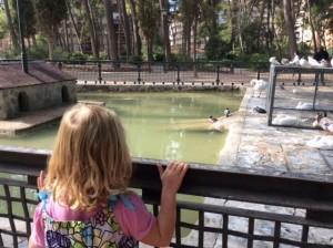 Park in Albacete